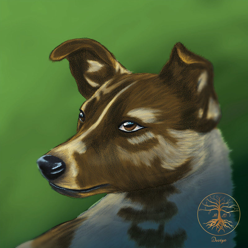 An image of a digital painting of the Russian Mongrel Laika who travelled into space by ABLG Design.
